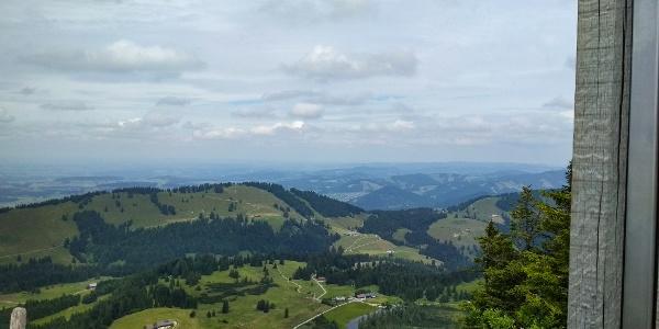 Blick vom Gipfel des Hochhäderichs in Richtung Alpenvorland
