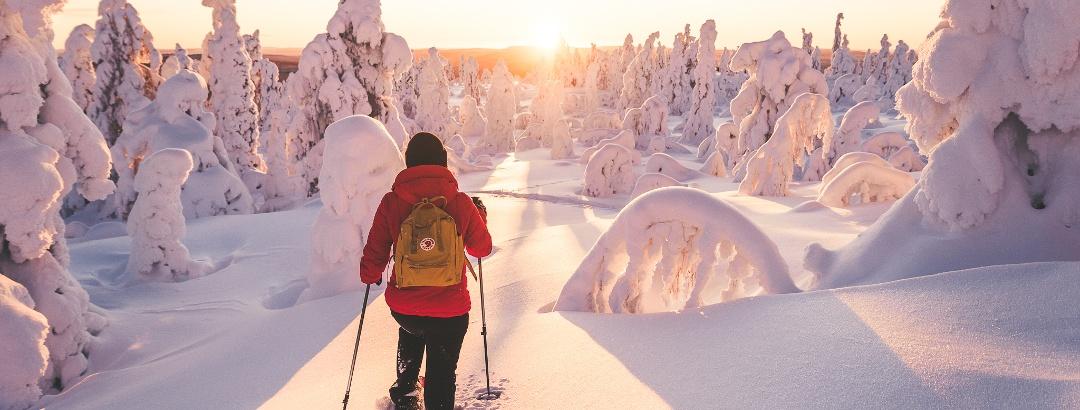 Schneeschuh-Trail in Ylläs