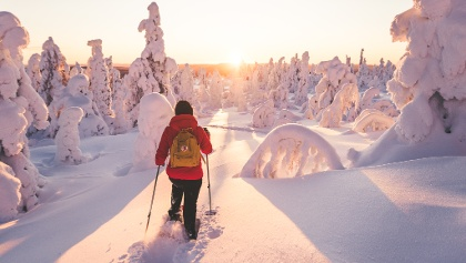 Snowshoeing trails in Ylläs