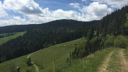 Panoramablick beim KERN-BUAM Panorama-Wanderweg