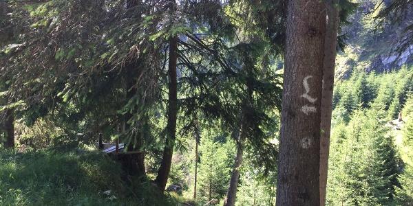 The Lech River Trail Waymark