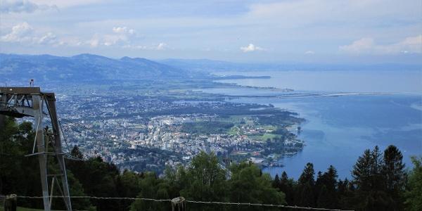 Aussicht auf das Vorarlberger Bodenseeufer und die 'Rheinmündung