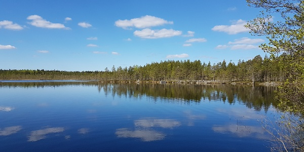 Pieni Koirajärvi