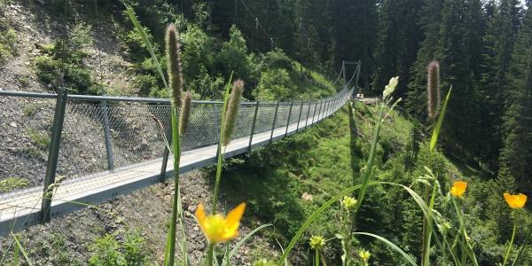 Hängebrücke Buchnertobel