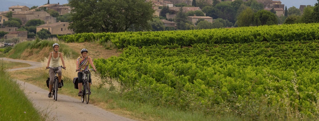 Radfahren durch die Weinberge