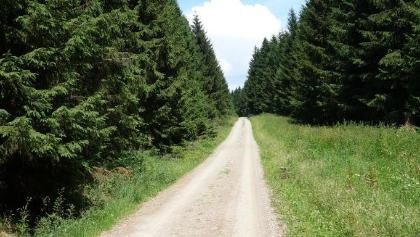 Top Trail of Germany !?