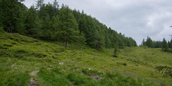 Weg zur Bergerseeehütte