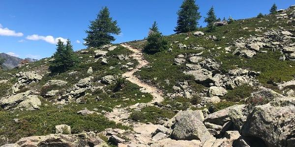 Bequemer Weg von der Alpe Monte Forclaz zum Chalet de l'Epée
