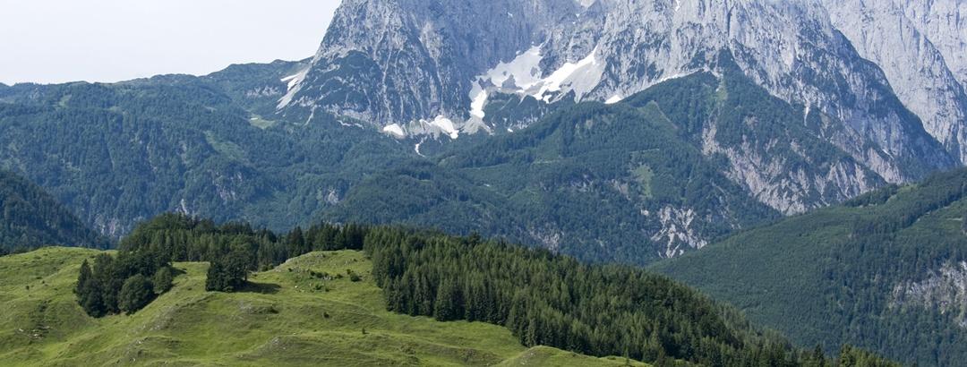 Ausblick von der Schnappenalm auf das Kaisergebirge