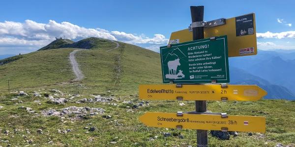 Abstieg von der Fischerhütte über Damböckhaus des ÖTK zum Schneebergdörfl