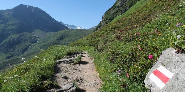 Richtung Val Maighels