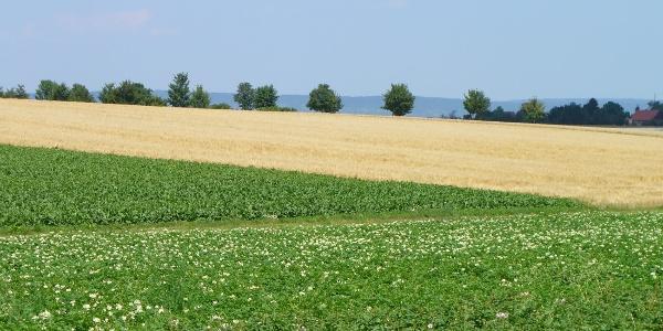 Landschaftseindruck Bondorf