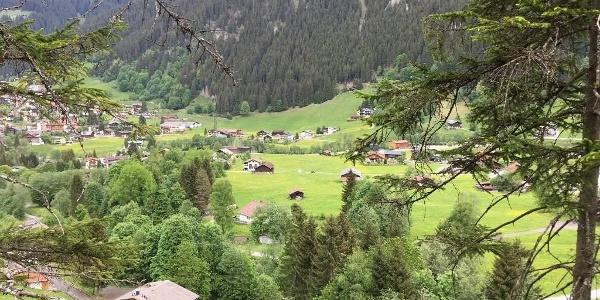 3_Grundstueck