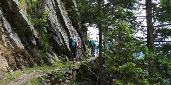 Eine erlebnisreiche Wanderung entlang der Waldgrenze