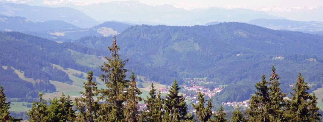 Blick auf Wengen mit Alpkette im Hintergrund