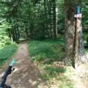 Ist das einzige Foto vom Trail, hatte keine Zeit zu fotografieren. :-)