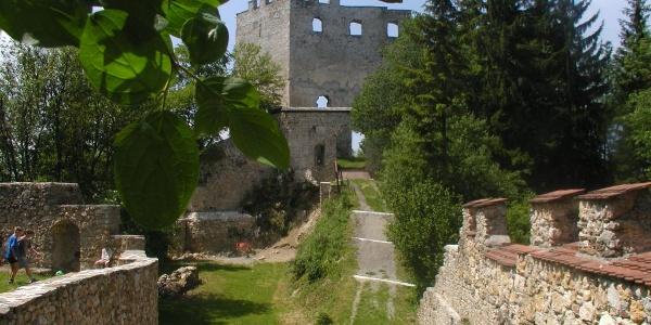 Die Burgruine Hohenwang am Weg