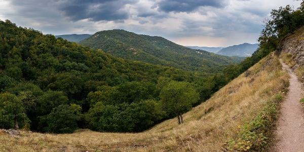 Panoráma a Spartacus-vadászösvényről a Duna felé