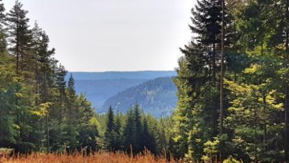 Blich ins Tal kurz vor der Grünhütte