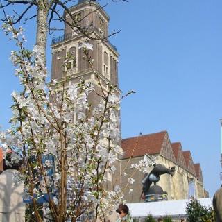 Lambertikirche