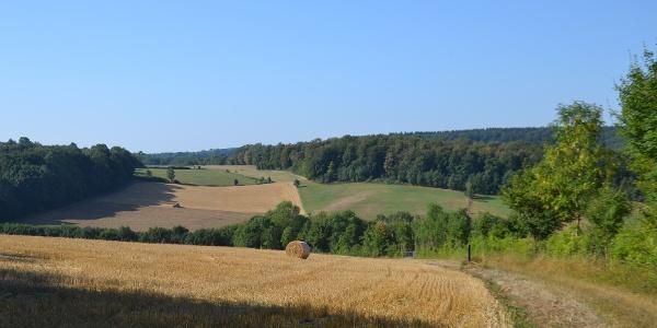Aussicht auf die Felder bei Schönenberg