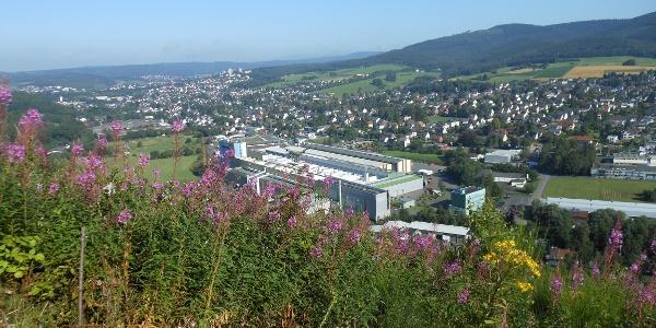 Aussicht Panoramabank durchs Ferndorftal