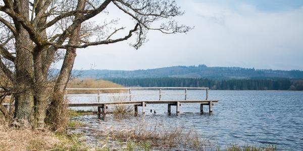 Jungferweiher Ulmen_Vulkaneifel-Pfad: Maare-und-Thermen-Pfad
