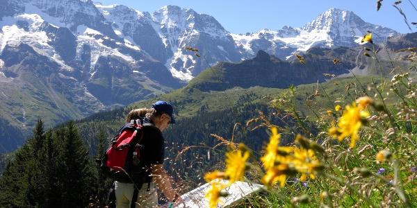North Face Trail Mürren