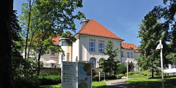 Naturkundemuseum Coburg