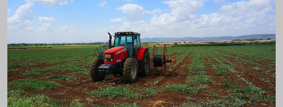 שדות בעמק יזרעאל