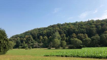 Würmtal zwischen Ehningen und Aidlingen