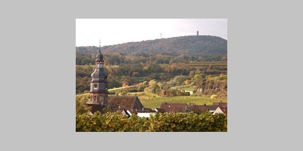Kallstadt - Edelweinort mit Tradition