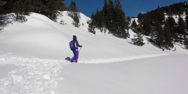 Schneeschuhtour Langis-Rickhubel