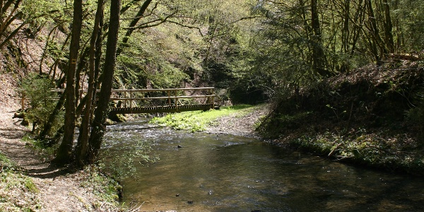 Brücke über den Alfbach_Vulkaneifel-Pfad: 2 Bäche-Pfad