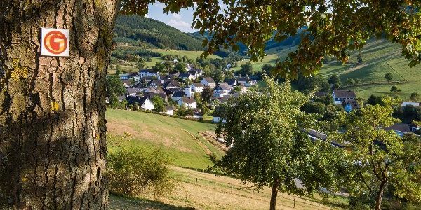 Bienenlehrpfad auf der Golddorf-Route Oberhenneborn