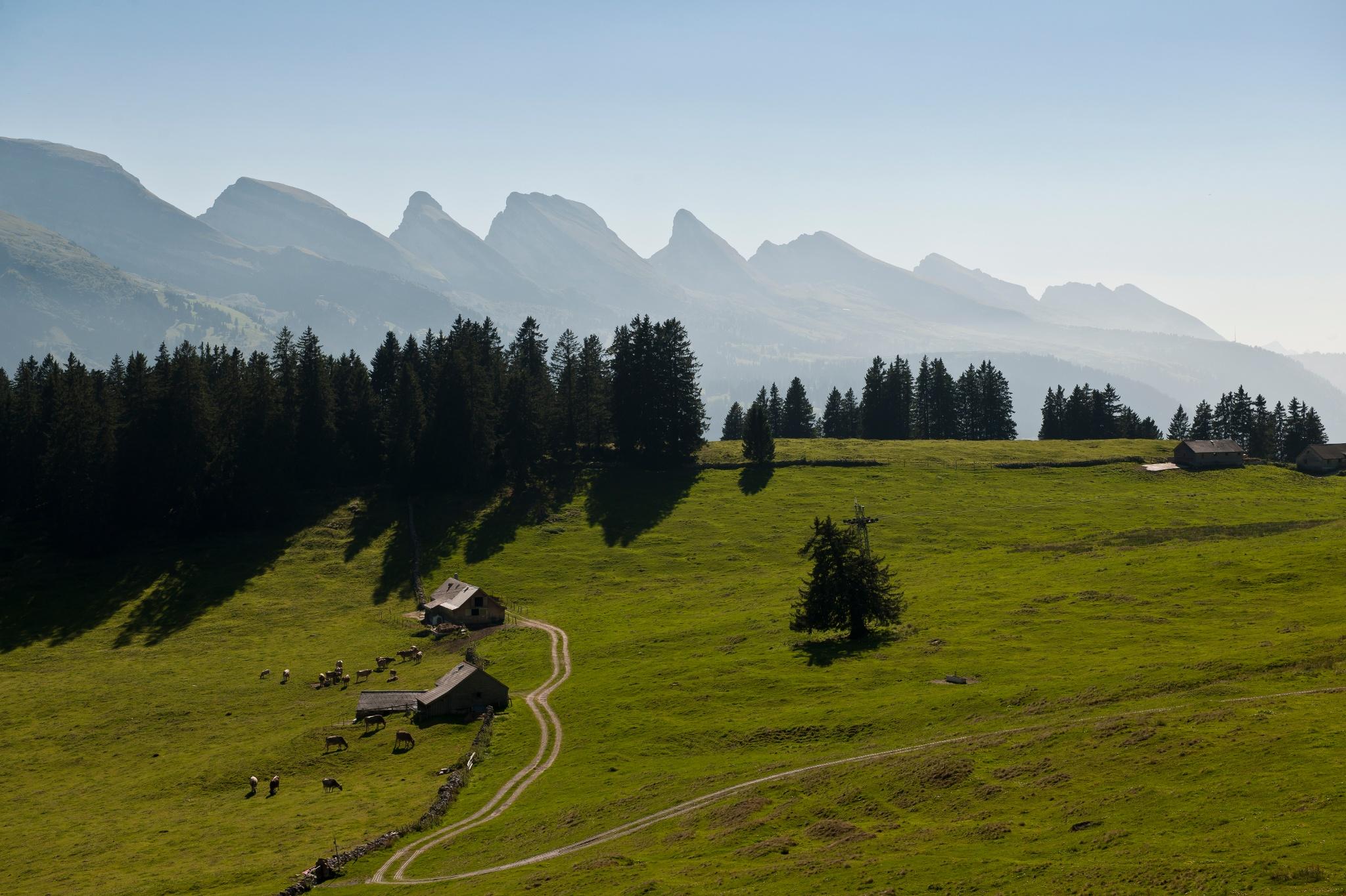Rund um Reil • Wanderung » outdooractive.com