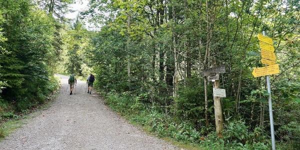 Fahrweg zur Zwerchen- und Klausenbergalm