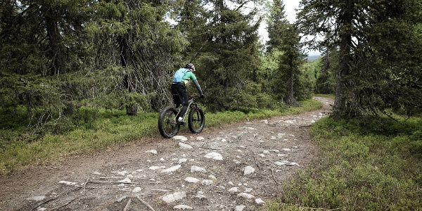 Mountainbiker in Valtavaara trail in Ruka