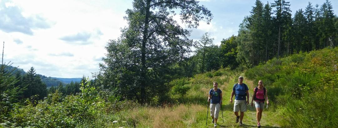Wandern rund um Bad Laasphe
