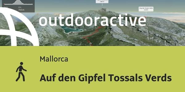 Wanderung auf Mallorca: Auf den Gipfel Tossals Verds