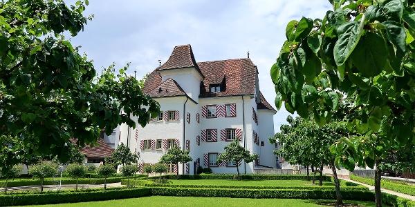 Schloss Aesch.