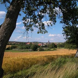 Blick auf Waldhausen