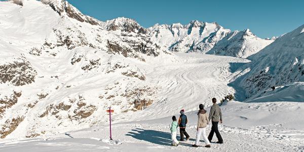 Winterwanderung von der Moosfluh via Riederfurka zur Riederalp