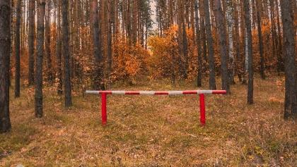 Erdőlátogatási korlátozás