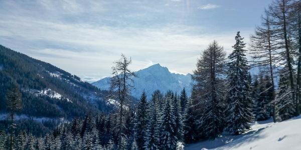 Blick zum Hochstadl in den Lienzer Dolomiten