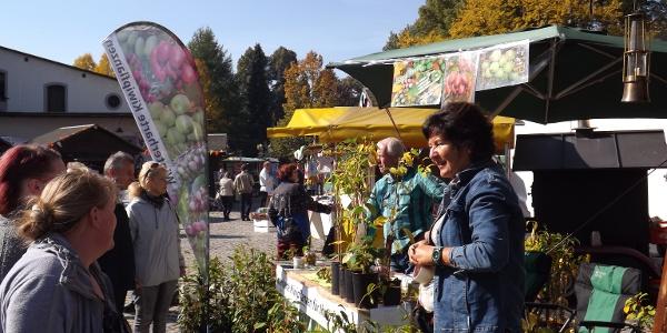 bunter Herbstmarkt