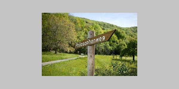 Der Philosophenweg verläuft am Waldrand auf halber Höhe.
