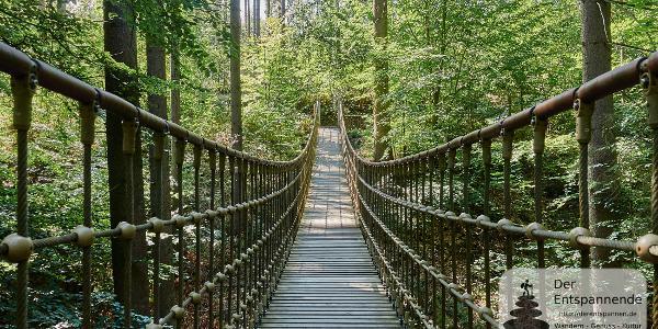 Hängebrücke Binger Wald