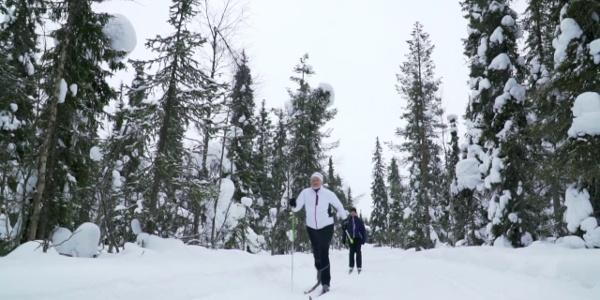 Nordic skiing in Vuosseli ski trail, Ruka Kuusamo