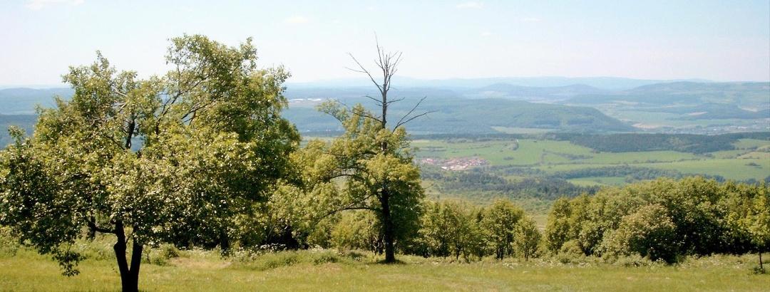 Blick vom Dolmar in die Rhön